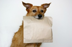 doggy bag meaning